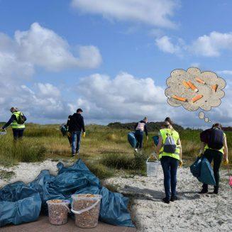Menschen säubern den Strand von Kippen und anderem Unrat